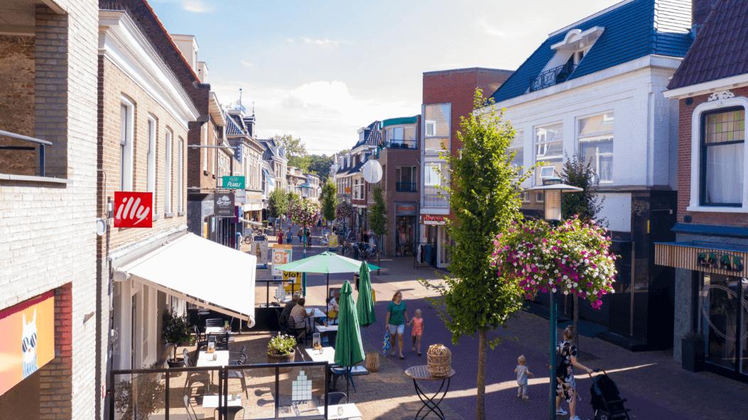 Oase Lease Bloembakken hanging baskets Leiden