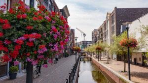 Oase Lease Veenendaal - hanging baskets